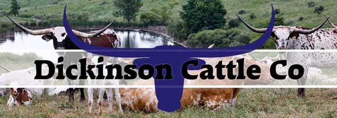 Used courtesy of Dickinson Cattle Co. USA